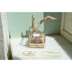 CANDLEHOLDER-TREE